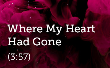 Where My Heart Had Gone